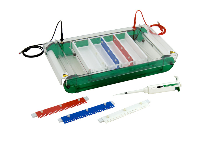Maxi-standard horizontal gel unit