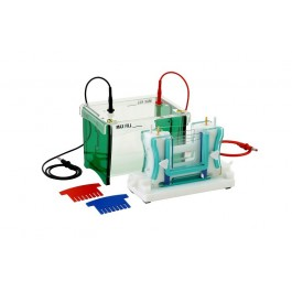 Mini vertical Protein dual gel electrophoresis system