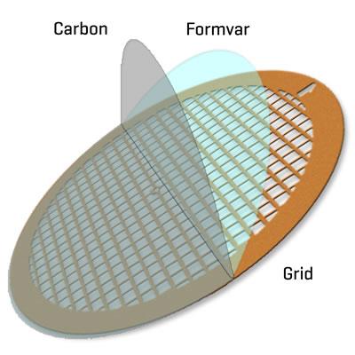 Formvar Only Grids